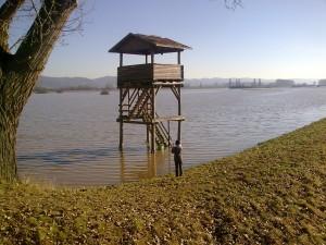 Weschnitzhochwasser 2011 - 1